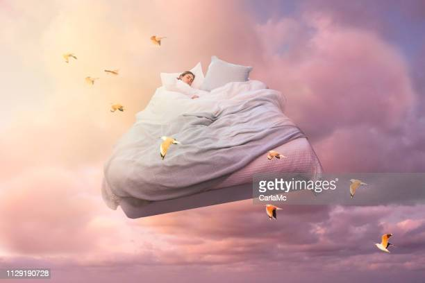 dream - dreamlike stock pictures, royalty-free photos & images