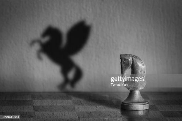 dream - chess board stock pictures, royalty-free photos & images