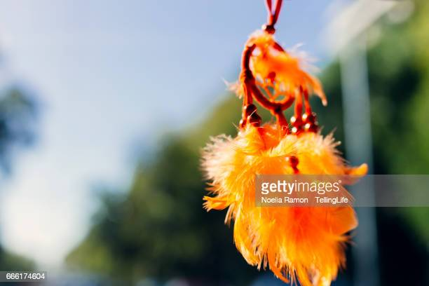 A dreamcatcher hanging in the car