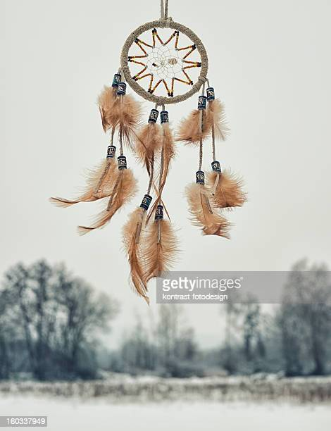 Indianischer Traumfänger, Winter