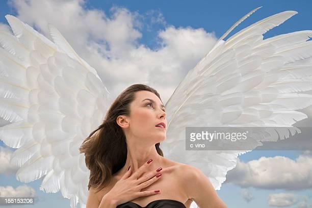 Träumen angel