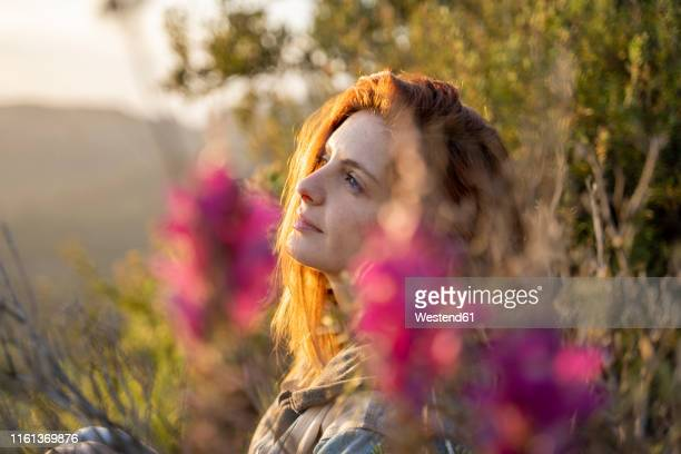 dreaming redheaded woman in nature at sunset - wishful skin stock pictures, royalty-free photos & images