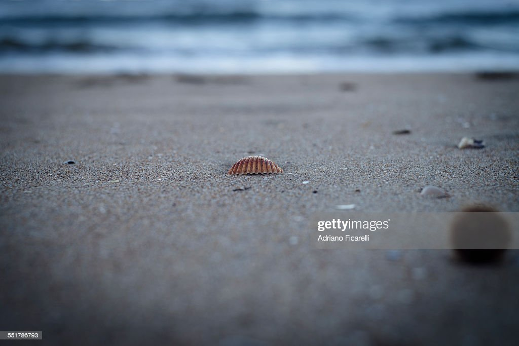 Dreaming the sea on a cold winter's day : Stock Photo