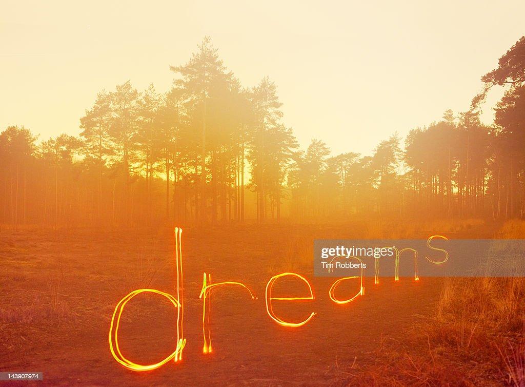 'dreams' written in light on misty heath. : Foto de stock