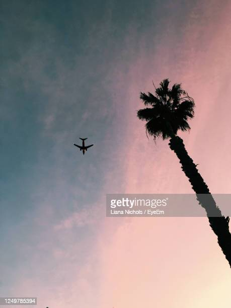 dreamscape - los angeles stock pictures, royalty-free photos & images