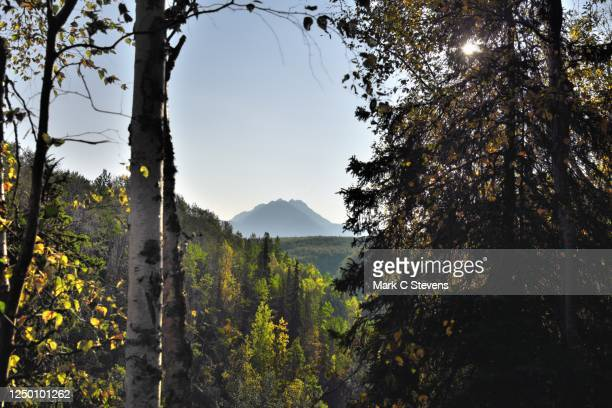 i dreamt of the light coming with a new day - chugach state park stock pictures, royalty-free photos & images