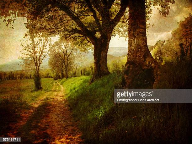 dreamy - impressionism stock photos and pictures