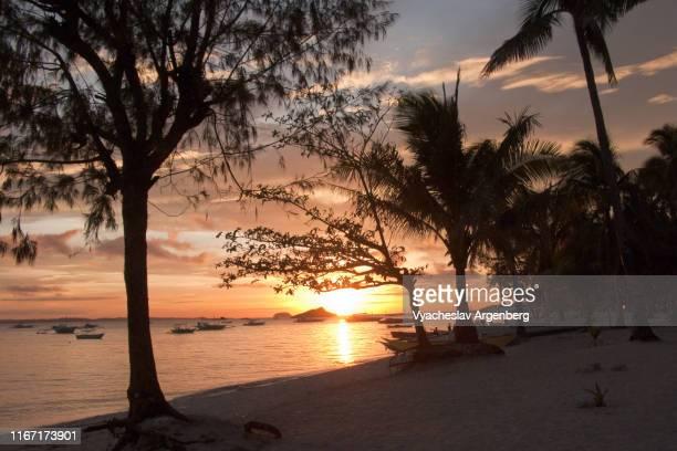 dreamy tropical sunset on the beach of malapascua island, philippines - argenberg bildbanksfoton och bilder