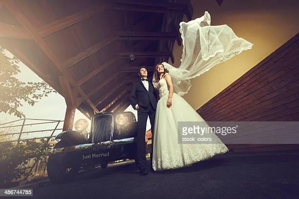 pareja de bodas de ensueño - velo fotografías e imágenes de stock