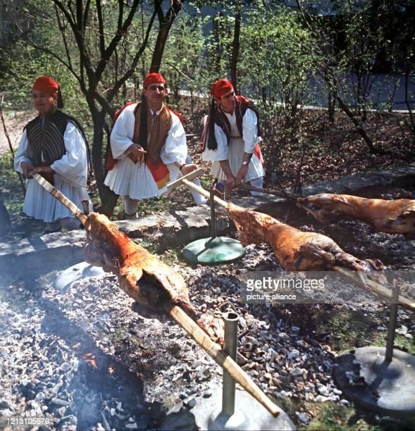 Drei Männer in der landestypischen Tracht von Griechenland braten über glühender Holzkohle Osterlämmer am Spieß.