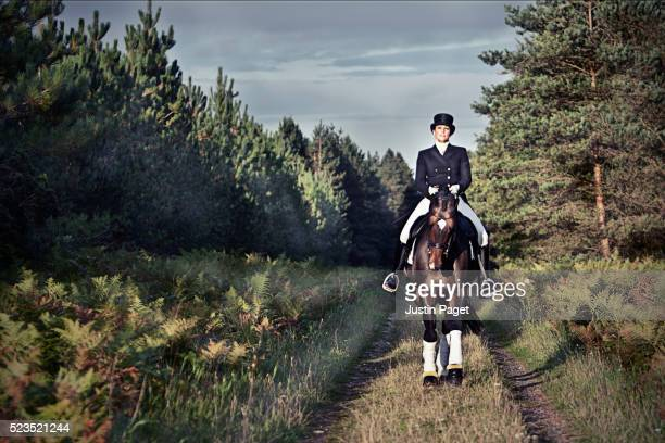 dressage horse on forest path - dressage stock pictures, royalty-free photos & images