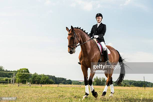 dressage rider on horse - equestrian event stock pictures, royalty-free photos & images
