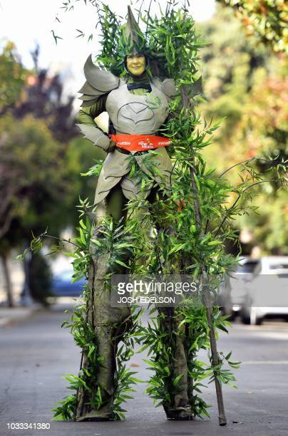 Dressed as a tree on stilts Jodi Power stands in a residential street during the Global Climate Action Summit in San Francisco California on...