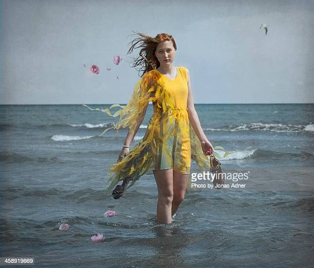 Dressed by the ocean