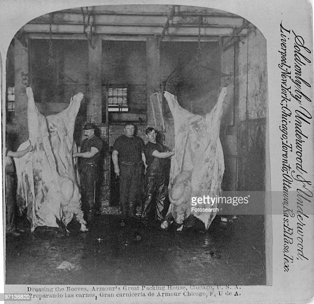 Dressing the Beeves Armour�s Great Packing House a stereocard depicting a slaughterhouse run by the Armour Company in Chicago ca1892 Published by...