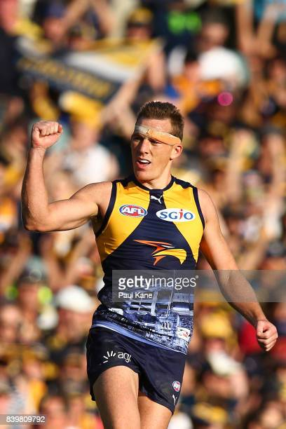 Drew Petrie of the Eagles celebrates a goal during the round 23 AFL match between the West Coast Eagles and the Adelaide Crows at Domain Stadium on...