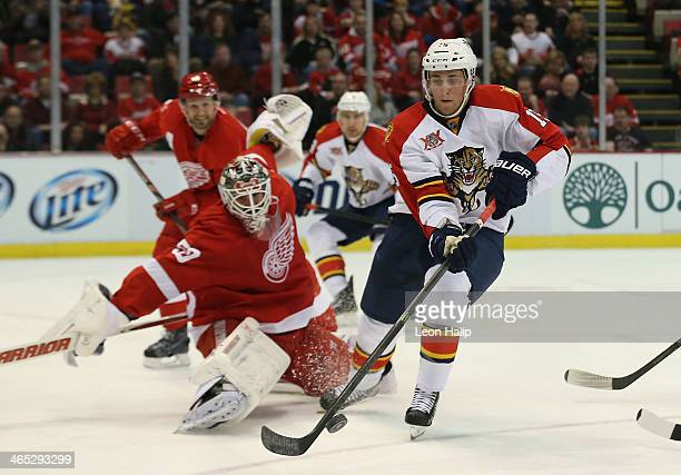 Drew Shore of the Florida Panthers looks to control the puck as goalie Jonas Gustavvson of the Detroit Red Wings looks on during the second period of...