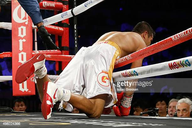 Drian Francisco falls through the ring against Guillermo Rigondeaux during their junior featherweight bout at the Mandalay Bay Events Center on...
