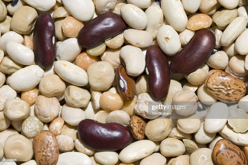 Beans and Pulses : ニュース写真