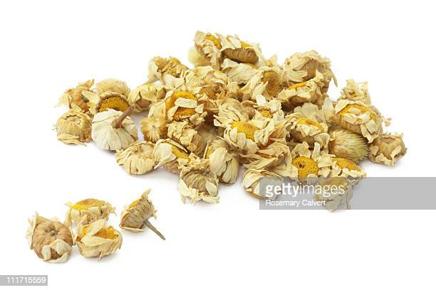 Dried camomile flowers for camomile tea.