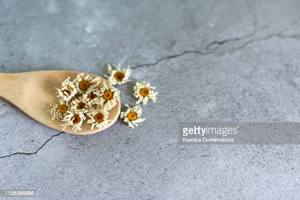 dried chamomile flowers and wooden spoon on white background - chamomile tea stock pictures, royalty-free photos & images