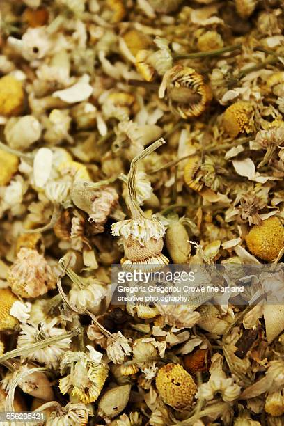 dried chamomile flowers - gregoria gregoriou crowe fine art and creative photography. stock pictures, royalty-free photos & images