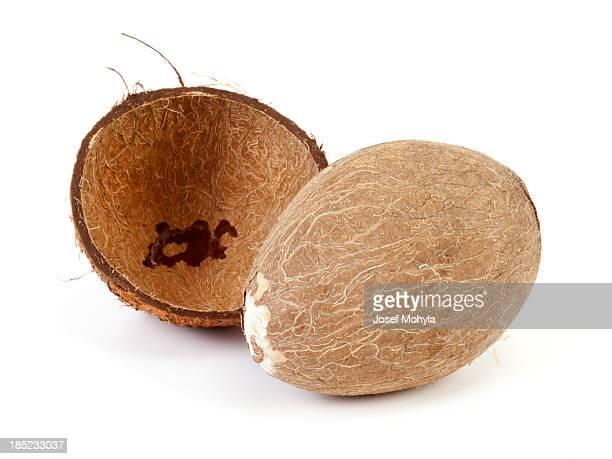 Coco seca