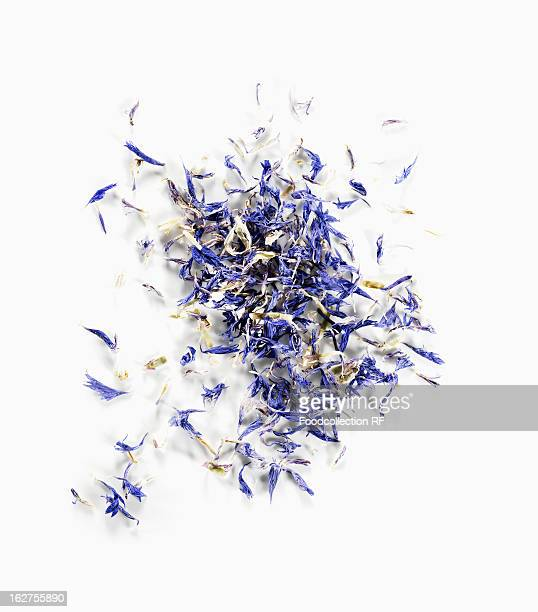Dried corn flowers on white background
