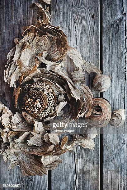 dried decorations on wooden background - västra götalands län stockfoto's en -beelden