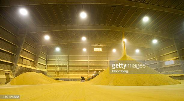 Dried distillers grains a byproduct of ethanol production used as feed for livestock sit in a storage area outside the Great River Energy Blue Flint...