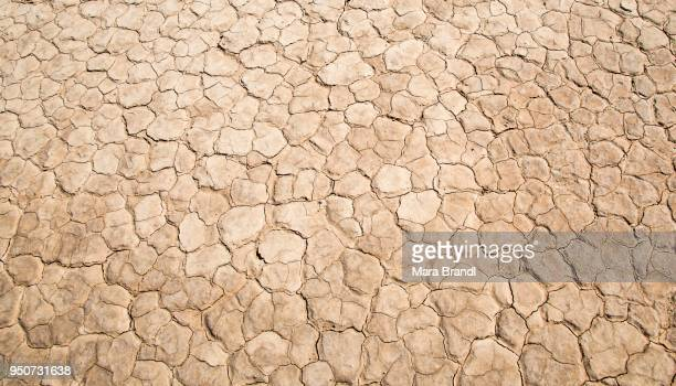 Dried earth, mudcracks, Death Valley, Death Valley National Park, California, USA