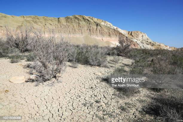 Dried field of the seabed of Aral Sea is seen on May 4 2018 in Uzbekistan The Aral Sea used to be the fourth biggest lake in the world had been...