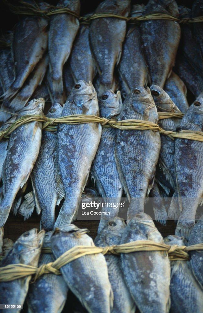 Phuket Market : News Photo