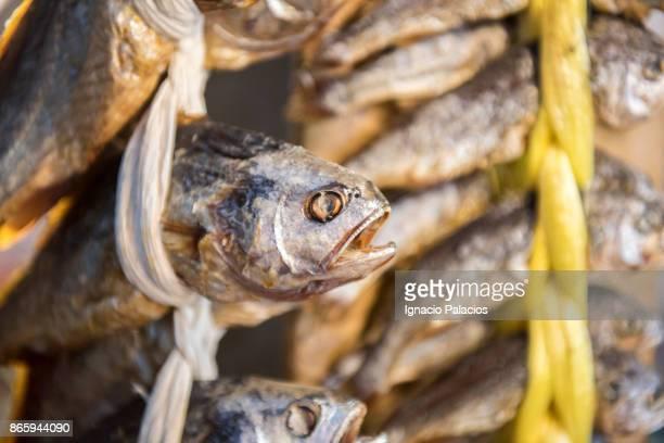 Dried fish, Food stalls, Namdaemun Market