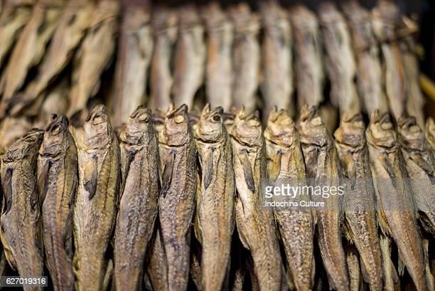 Dried fish for sale at namun market, Seoul, South Korea