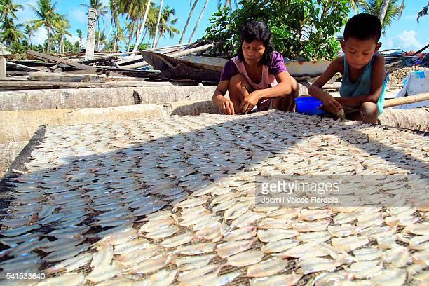 dried fish making process (santa fe, bantayan island, cebu, philippines) - joemill flordelis stock pictures, royalty-free photos & images