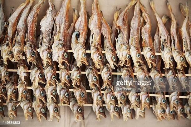 Dried fish of walleye pollock,korea food