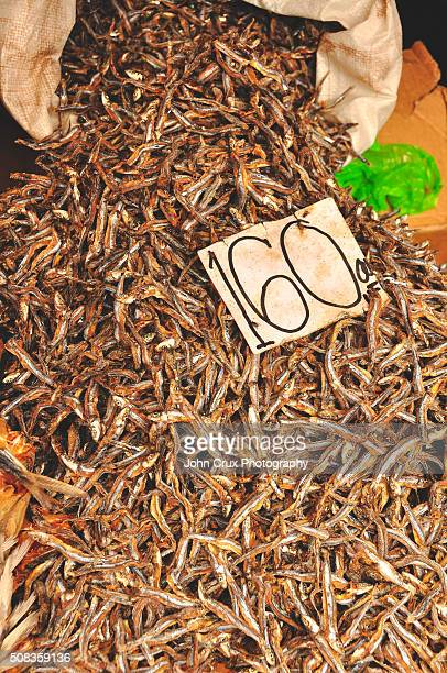 dried fish - negros oriental stock pictures, royalty-free photos & images