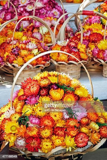 Dried flowers for sale, Dalat