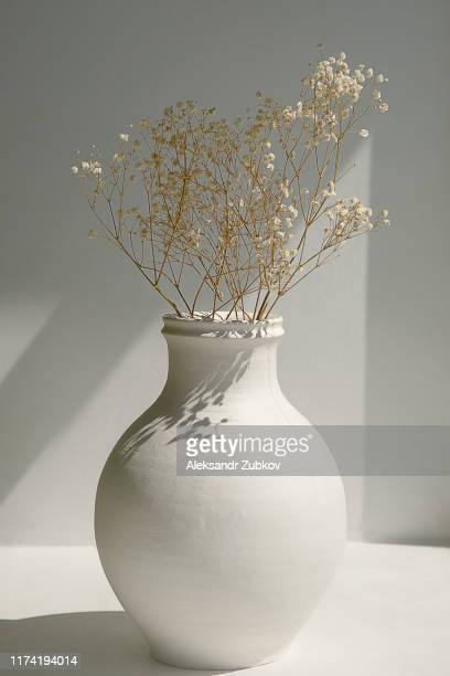 dried flowers in a white antique vase on the window. - ceramics stock pictures, royalty-free photos & images