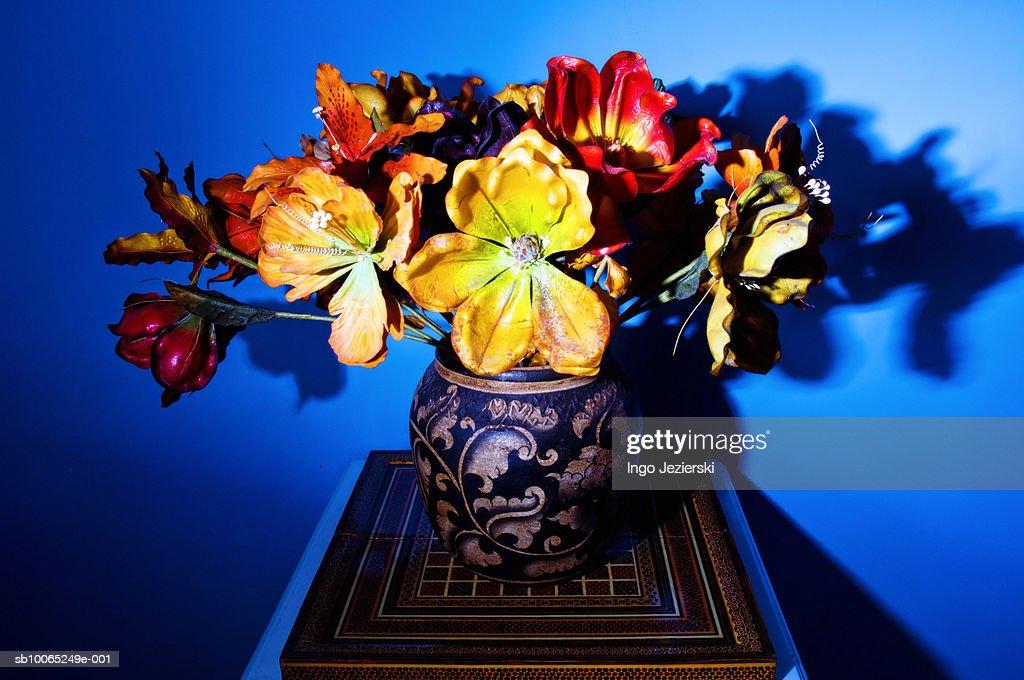 Dried flowers in vase : Foto stock