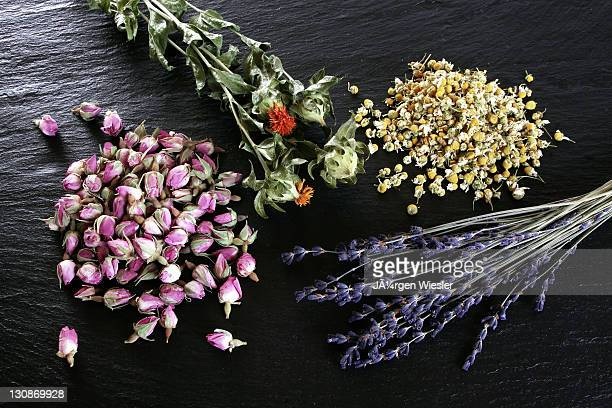 Jã¼rgen Rose Photos and Premium High Res Pictures - Getty ...