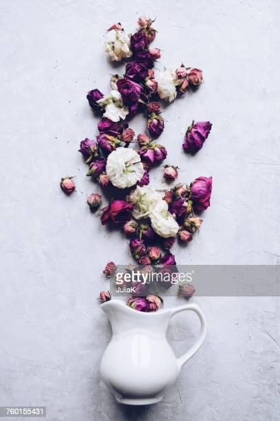 dried flowers spilling out of a jug - julia rose stock photos and pictures