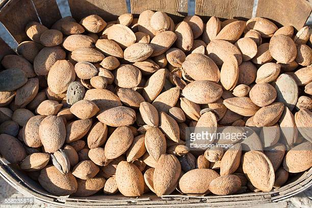 Dried Fruits Almond P Amygdalus France