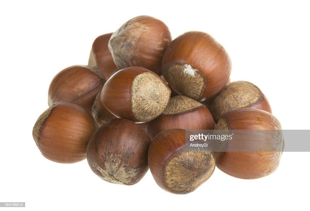 Dried hazelnuts : Stock Photo