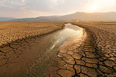 Dried lake and river on summer and Climate change concept.