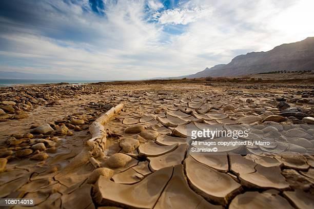 dried lake - lake bed stock-fotos und bilder