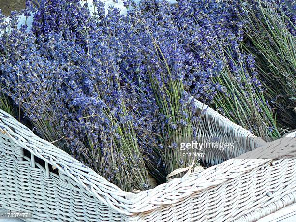 Dried lavender in white basket