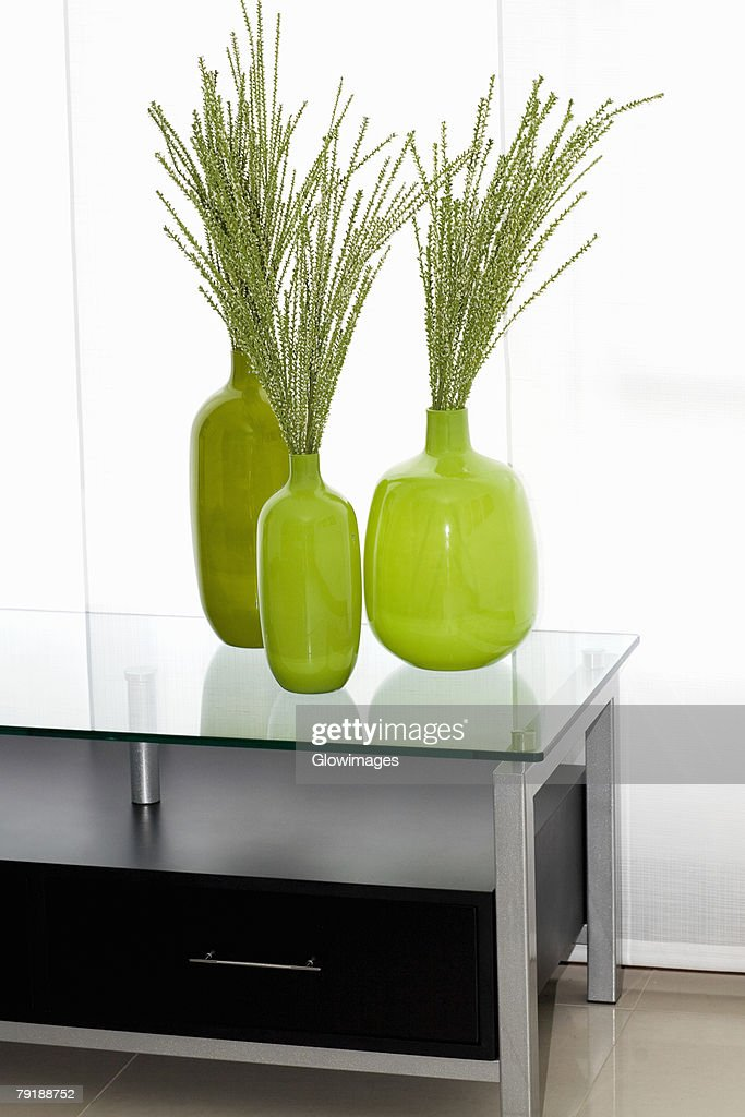 Dried leaves in vases on a table : Foto de stock
