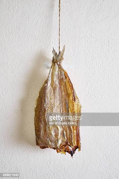 Dried Lizard Fish
